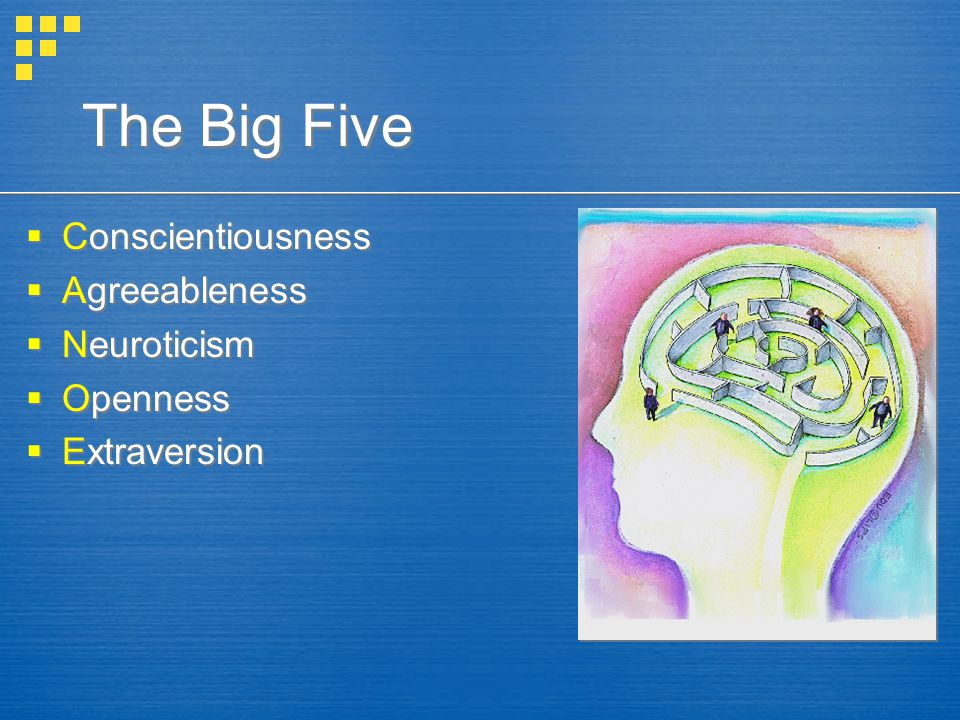 The Big Five  Conscientiousness  Agreeableness  Neuroticism  Openness  Extraversion  Conscientiousness  Agreeableness  Neuroticism  Openness