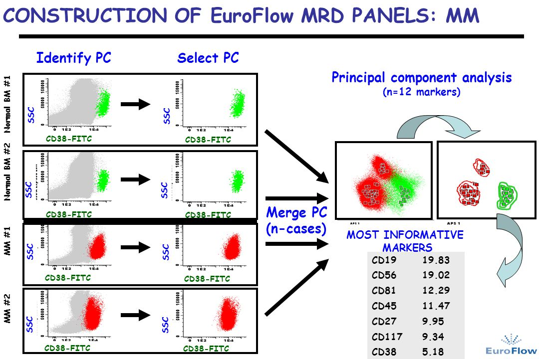 CONSTRUCTION OF EuroFlow MRD PANELS: MM MM #1 MM #2 Normal BM #1 Normal BM #2 SSC CD38-FITC SSC CD38-FITC Identify PCSelect PC Merge PC (n-cases) Prin