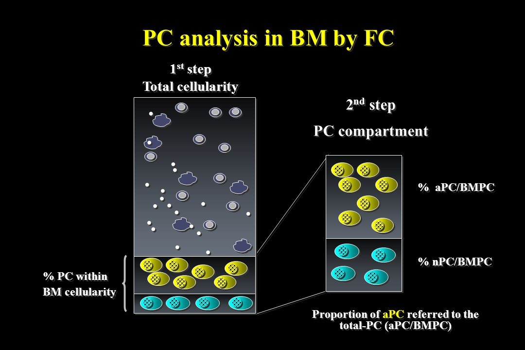 Proportion of aPC referred to the total-PC (aPC/BMPC) 2 nd step PC compartment 2 nd step PC compartment........................................ % aPC/