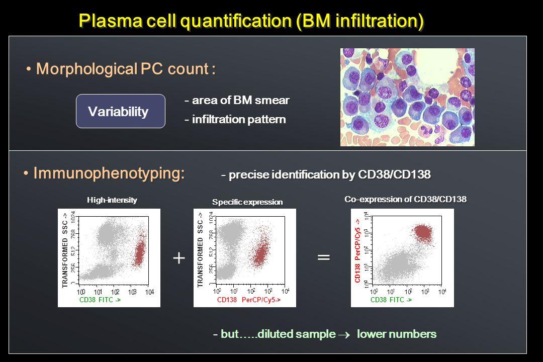 Plasma cell quantification (BM infiltration) Morphological PC count : - area of BM smear - infiltration pattern - area of BM smear - infiltration patt