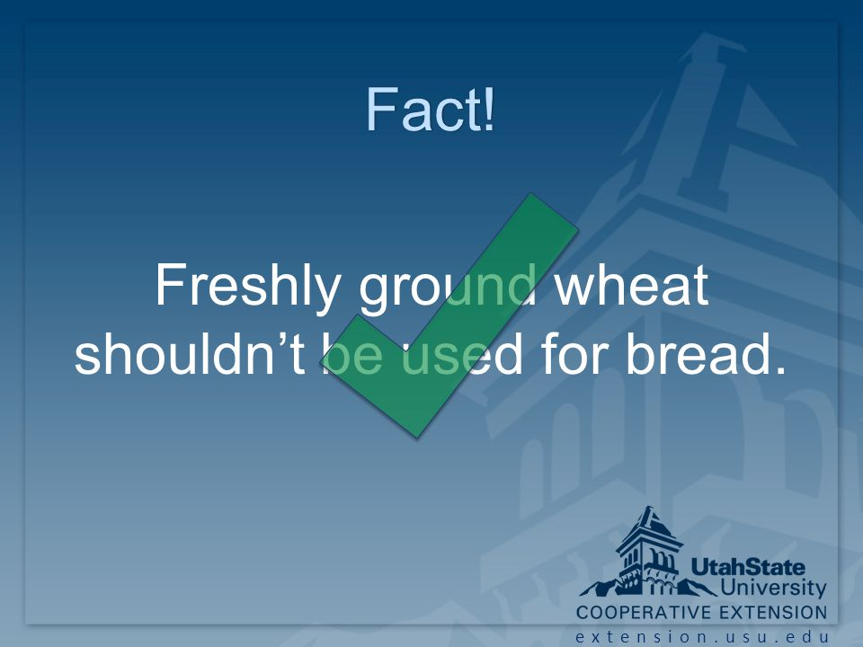 extension.usu.edu Fact! Freshly ground wheat shouldn't be used for bread.