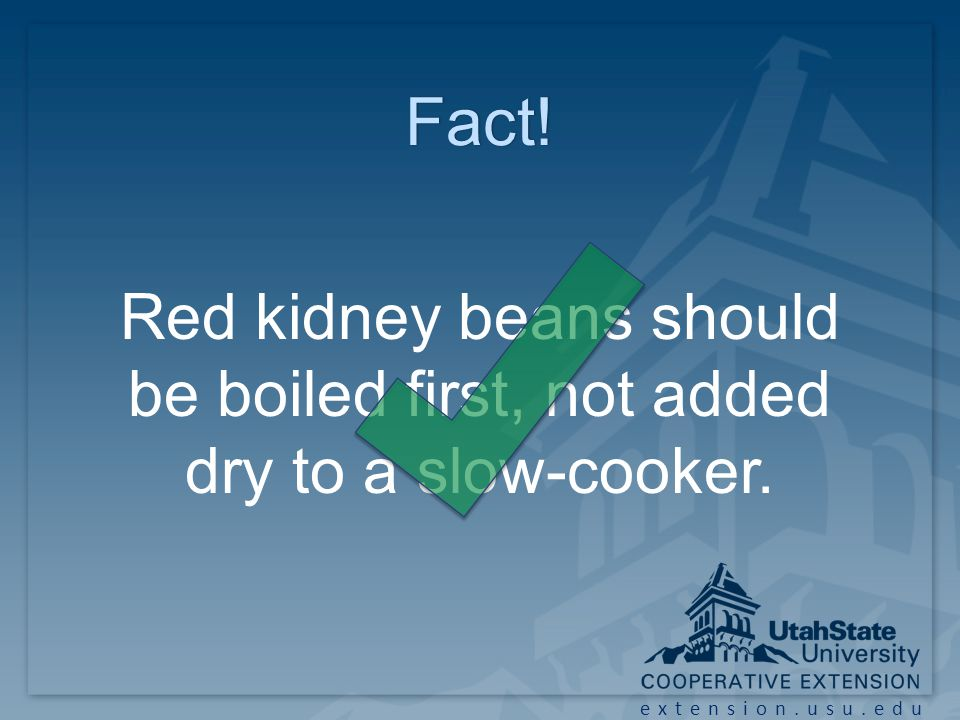 extension.usu.edu Fact! Red kidney beans should be boiled first, not added dry to a slow-cooker.