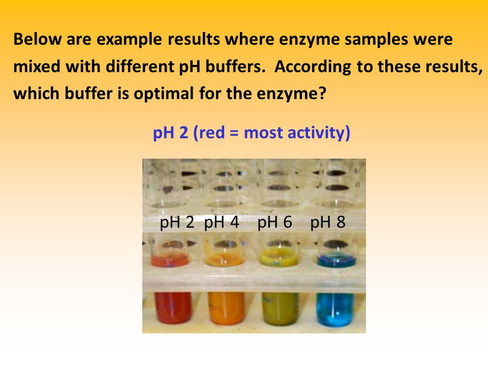 Below are example results where enzyme samples were mixed with different pH buffers.
