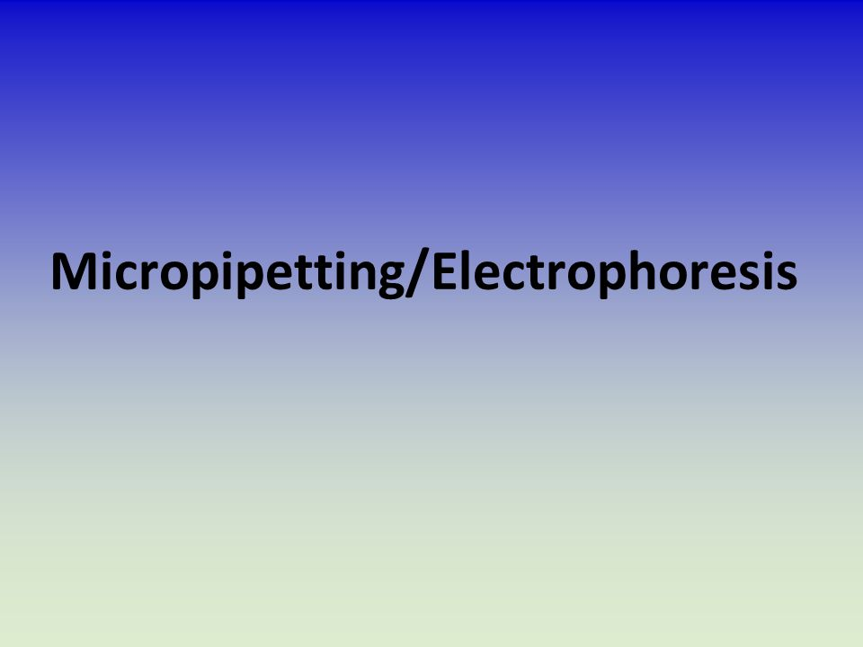 Micropipetting/Electrophoresis