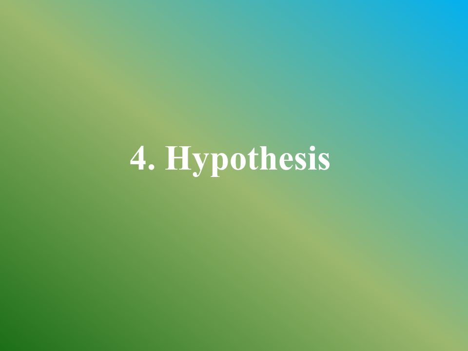 4. Hypothesis