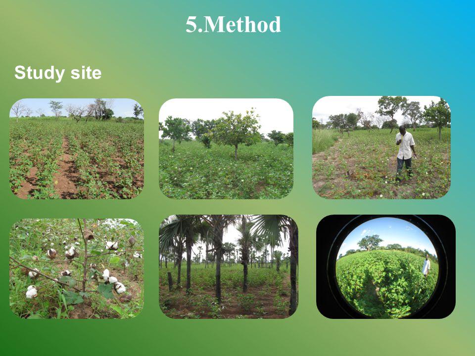 5.Method Study site
