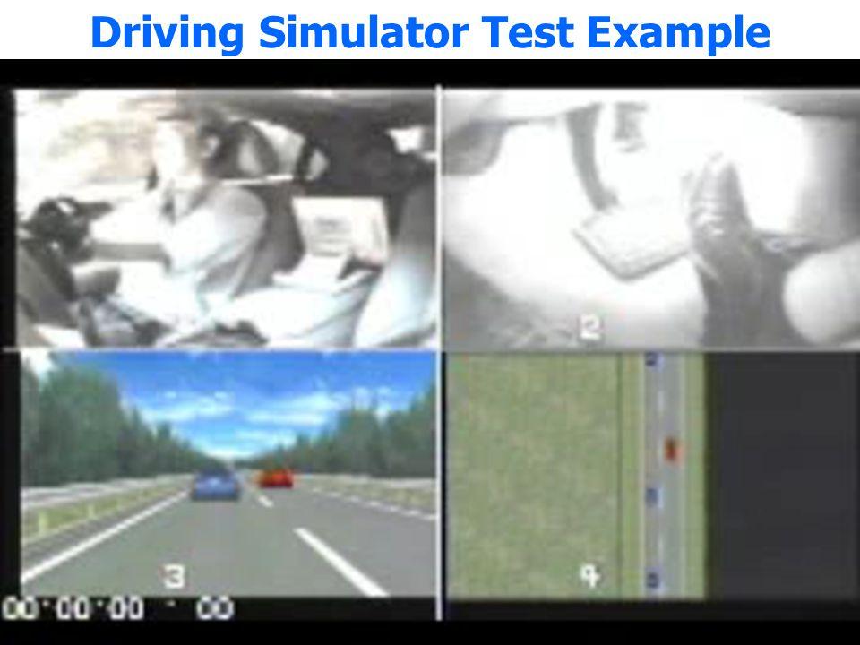 Driving Simulator Test Example