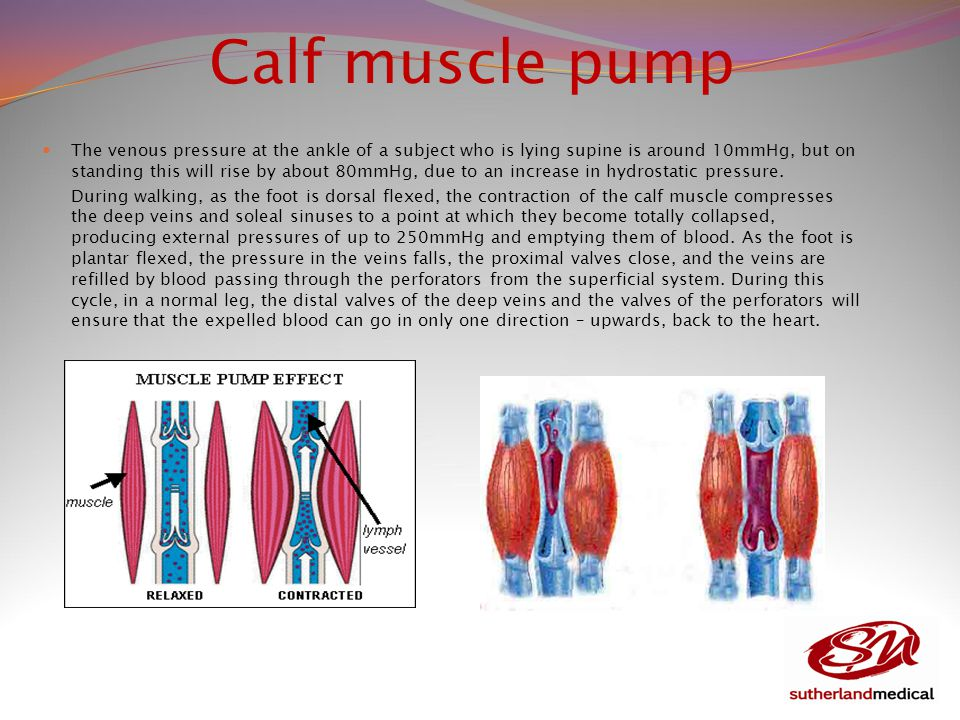 Calf muscle pump The venous pressure at the ankle of a subject who is lying supine is around 10mmHg, but on standing this will rise by about 80mmHg, due to an increase in hydrostatic pressure.