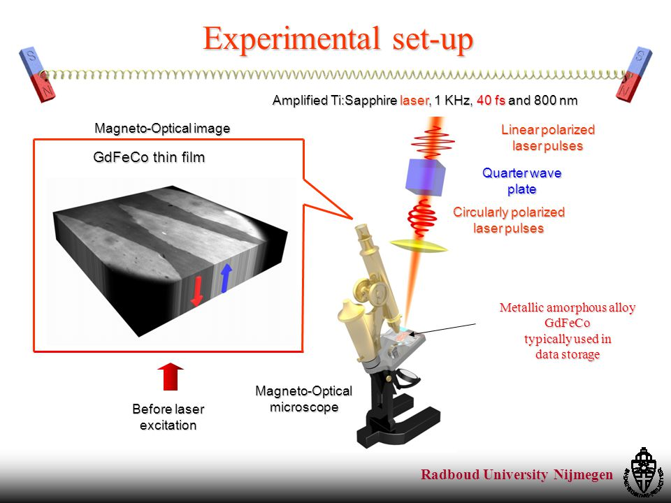 Radboud University Nijmegen Experimental set-up Metallic amorphous alloy GdFeCo typically used in data storage Circularly polarized laser pulses Quarter wave plate Linear polarized laser pulses Magneto-Opticalmicroscope Amplified Ti:Sapphire laser, 1 KHz, 40 fs and 800 nm Before laser excitation GdFeCo thin film Magneto-Optical image