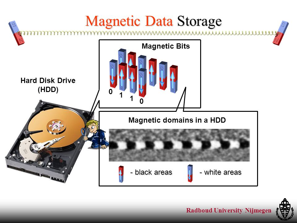 Radboud University Nijmegen Challenges in Magnetic Data Storage Higher and higher bit densityHigher and higher data storage speed FASTER switching speed of the tiny magnets SMALLER magnetic areas (tinier magnets) This thesis focuses on the speed of the magnetization switching By 2012, just two disks will provide the same storage capacity as the human brain! Robert Birge (Syracuse University) ~ 10 Terabyte FAST!