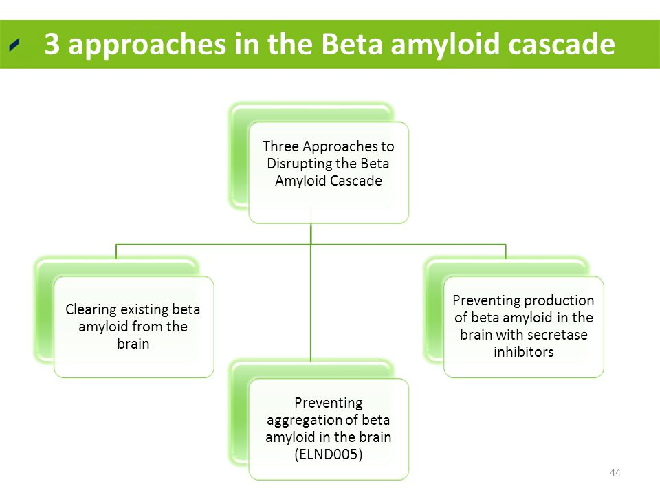 3 approaches in the Beta amyloid cascade 44 Three Approaches to Disrupting the Beta Amyloid Cascade Clearing existing beta amyloid from the brain Preventing aggregation of beta amyloid in the brain (ELND005) Preventing production of beta amyloid in the brain with secretase inhibitors