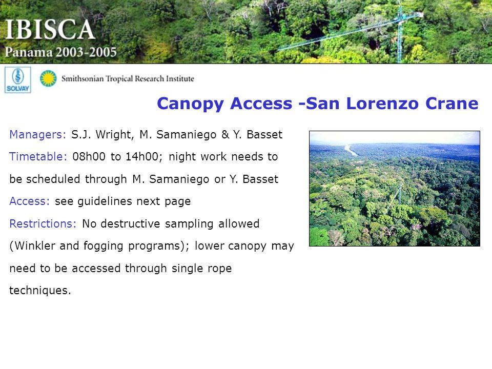 Canopy Access -San Lorenzo Crane Managers: S.J. Wright, M.