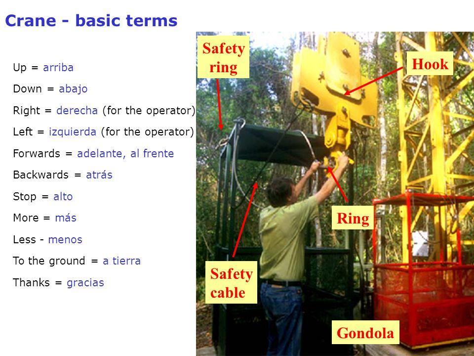 Crane - basic terms Up = arriba Down = abajo Right = derecha (for the operator) Left = izquierda (for the operator) Forwards = adelante, al frente Backwards = atrás Stop = alto More = más Less - menos To the ground = a tierra Thanks = gracias Hook Ring Gondola Safety ring Safety cable