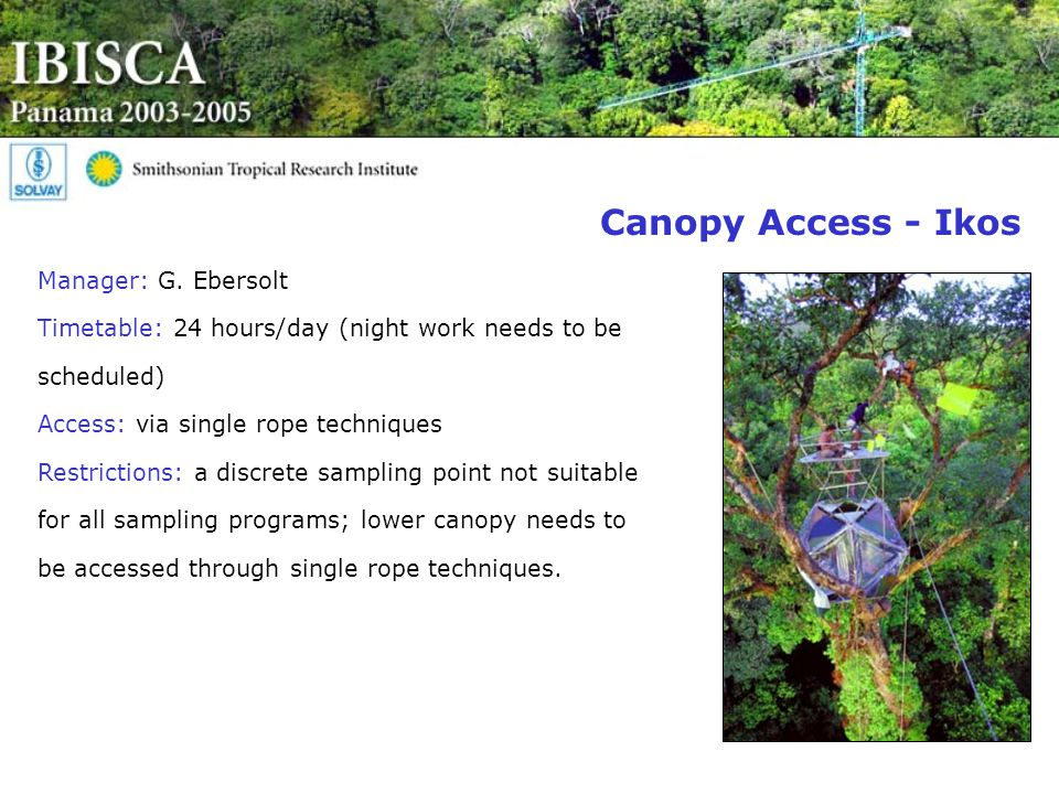 Canopy Access - Ikos Manager: G.