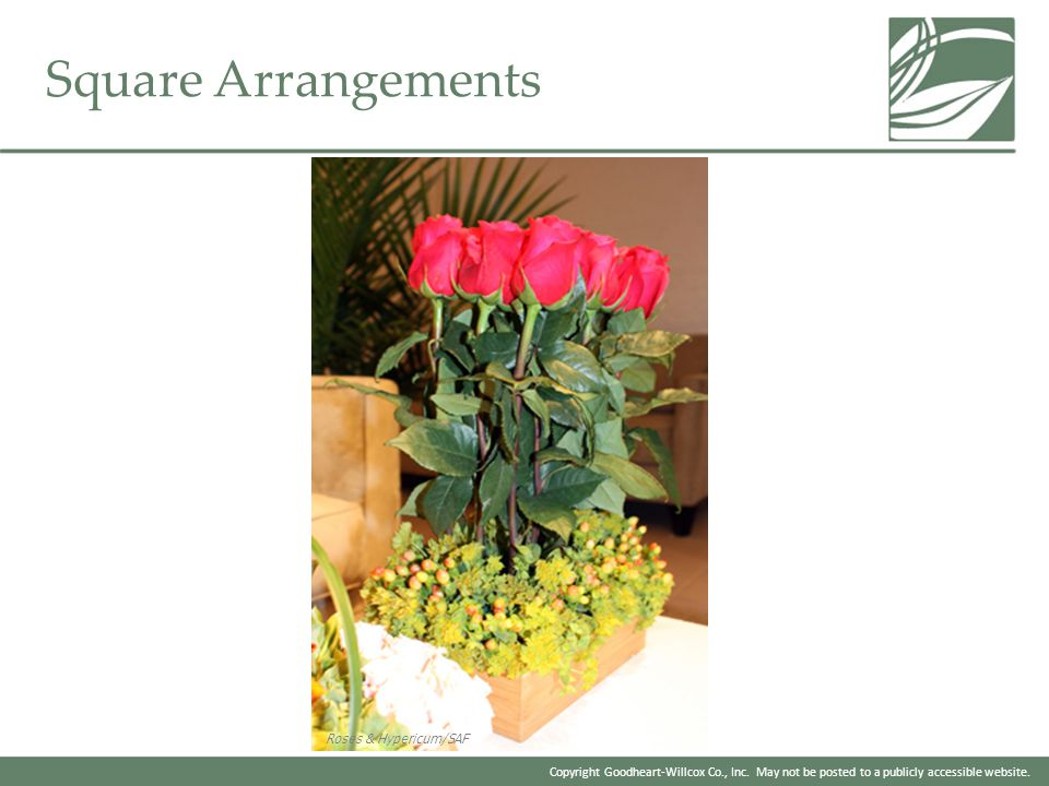 Copyright Goodheart-Willcox Co., Inc. May not be posted to a publicly accessible website. Square Arrangements Roses & Hypericum/SAF