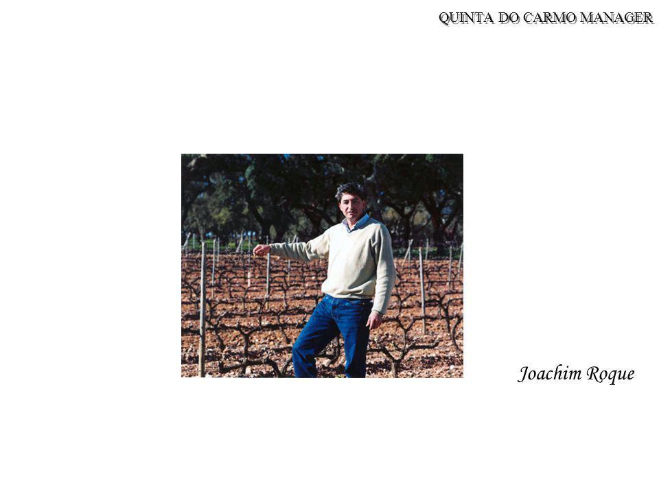 QUINTA DO CARMO MANAGER Joachim Roque