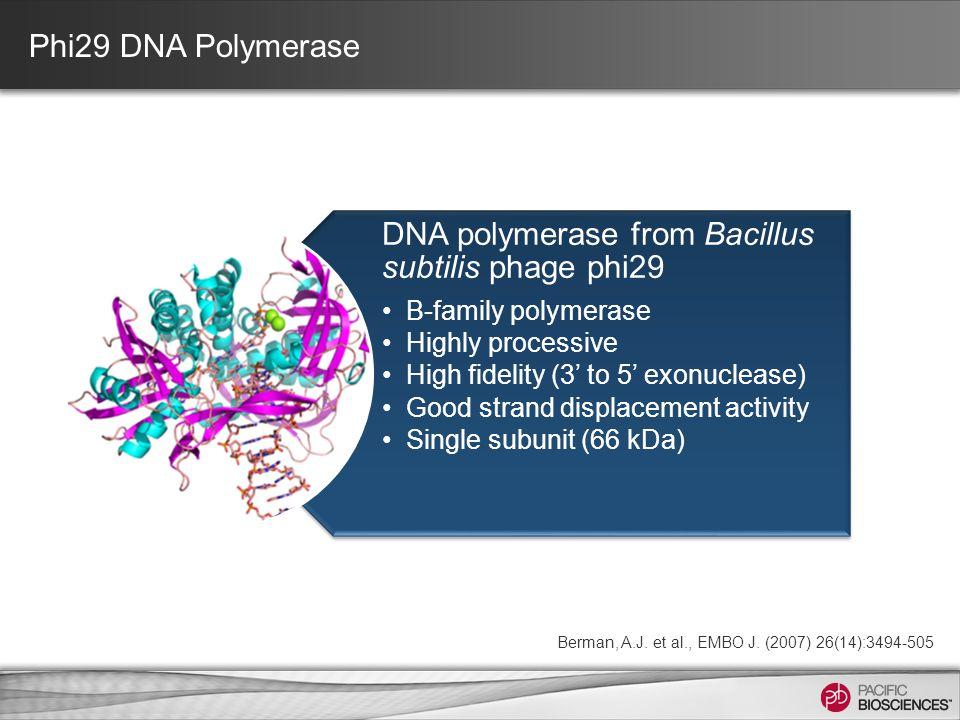 Berman, A.J. et al., EMBO J. (2007) 26(14):3494-505 Phi29 DNA Polymerase