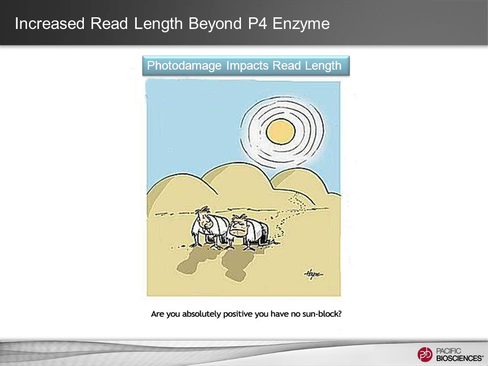 Increased Read Length Beyond P4 Enzyme Photodamage Impacts Read Length