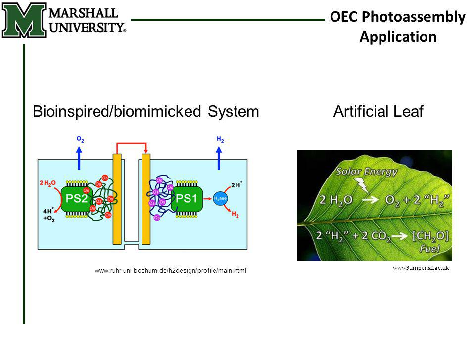 OEC Photoassembly Application www3.imperial.ac.uk Artificial Leaf www.ruhr-uni-bochum.de/h2design/profile/main.html Bioinspired/biomimicked System