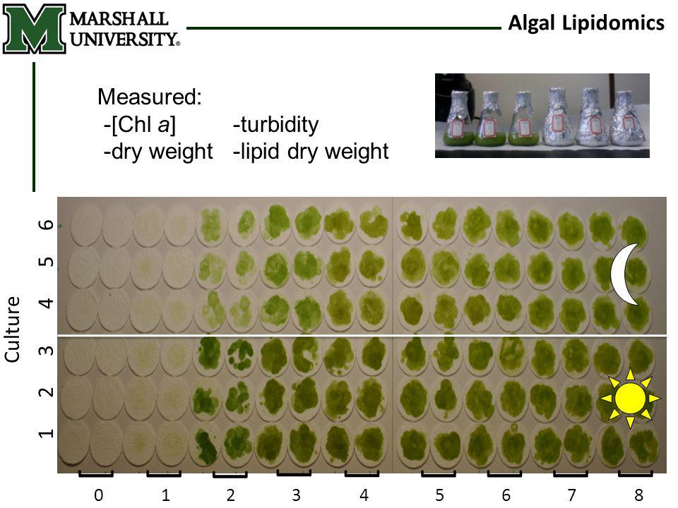 Algal Lipidomics [[ [ [ [ [[[ [ 01 2 35 4 678 Culture 1 2 3 4 5 6 Measured: -[Chl a]-turbidity -dry weight-lipid dry weight