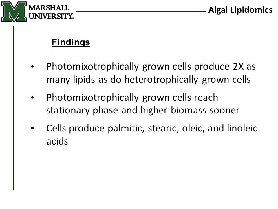 Algal Lipidomics Photomixotrophically grown cells produce 2X as many lipids as do heterotrophically grown cells Photomixotrophically grown cells reach