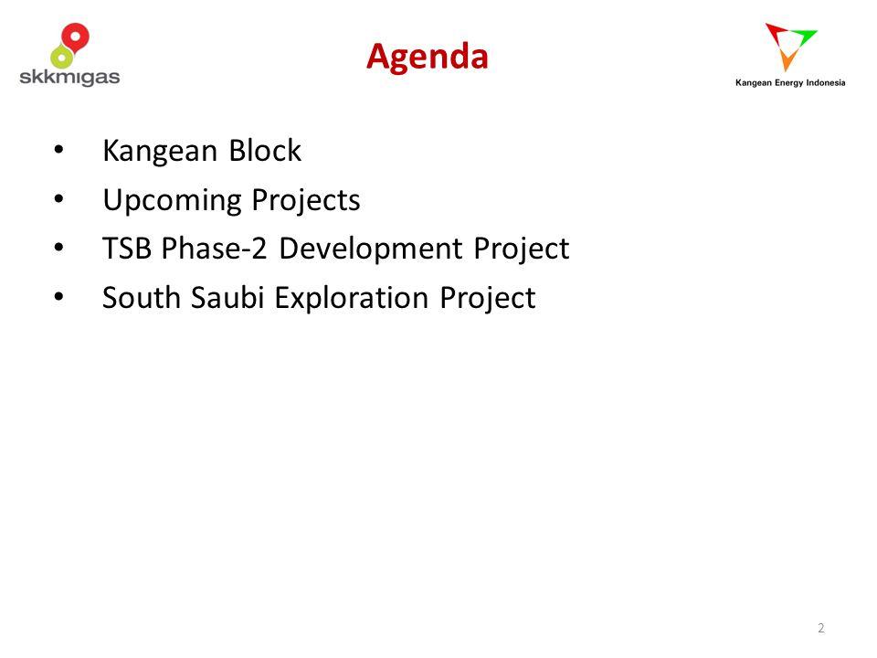 3 Kangean Block