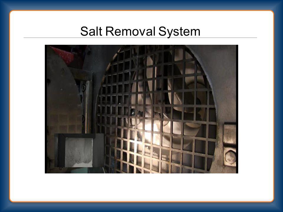 Salt Removal System