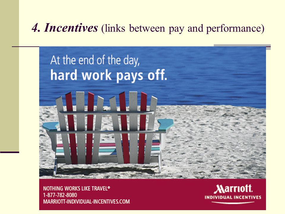 4. Incentives (links between pay and performance)