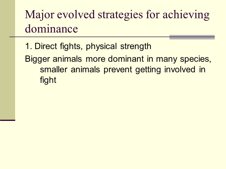 Major evolved strategies for achieving dominance 1. Direct fights, physical strength Bigger animals more dominant in many species, smaller animals pre