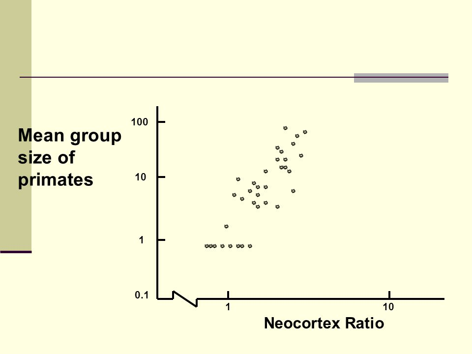 110 0.1 1 10 100 Neocortex Ratio Mean group size of primates