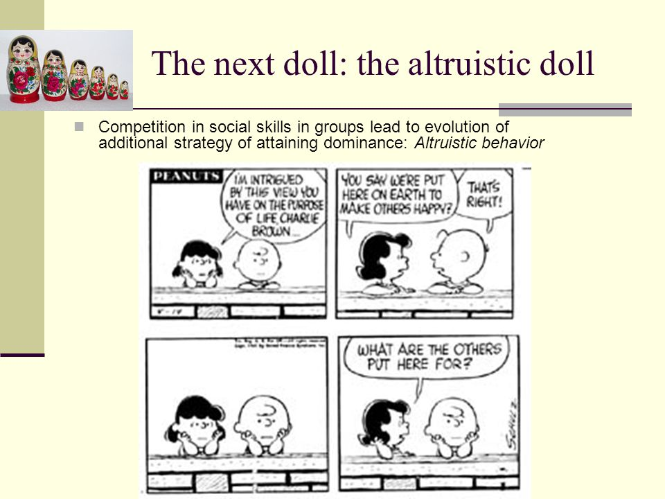 The next doll: the altruistic doll Competition in social skills in groups lead to evolution of additional strategy of attaining dominance: Altruistic