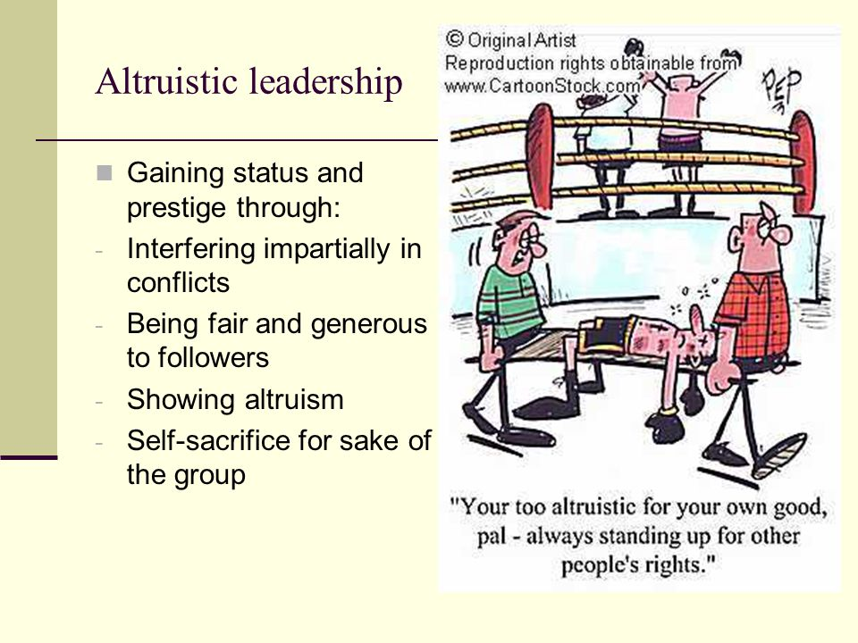 Altruistic leadership Gaining status and prestige through: - Interfering impartially in conflicts - Being fair and generous to followers - Showing alt