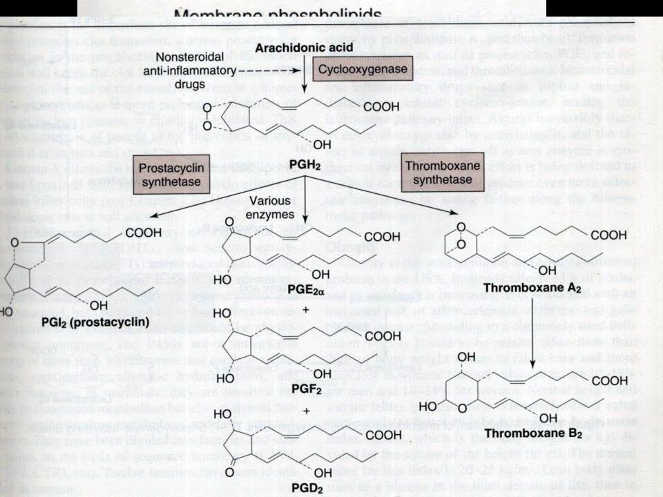 08-01-14Local Hormones.22 Prostaglandins.Synthesized from Arachidonic Acid.