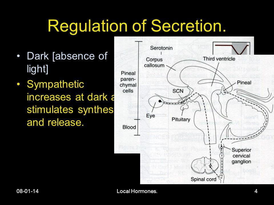 08-01-14Local Hormones.4 Regulation of Secretion.