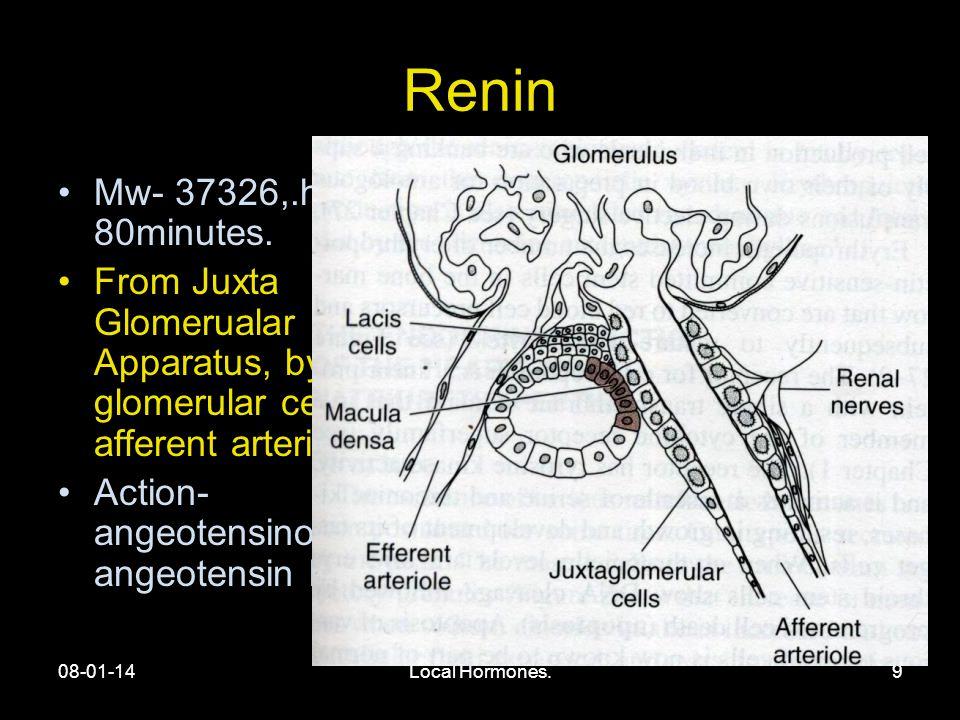 08-01-14Local Hormones.9 Renin Mw- 37326,.half life- 80minutes.