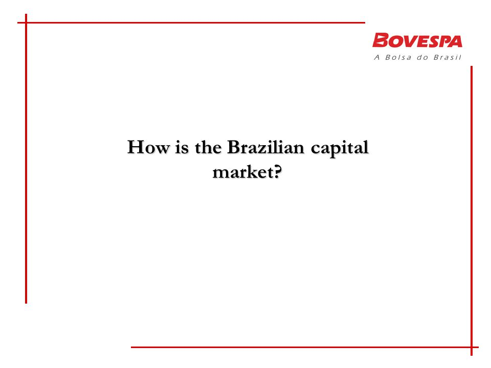 How is the Brazilian capital market