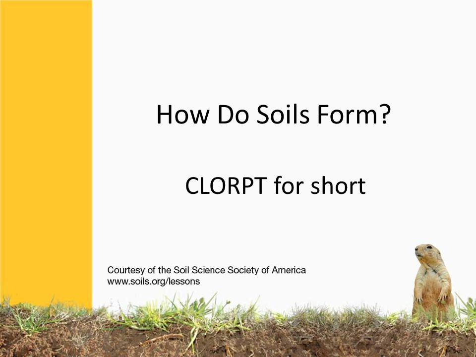 Soils differ from one part of the world to another, even from one part of a backyard to another.