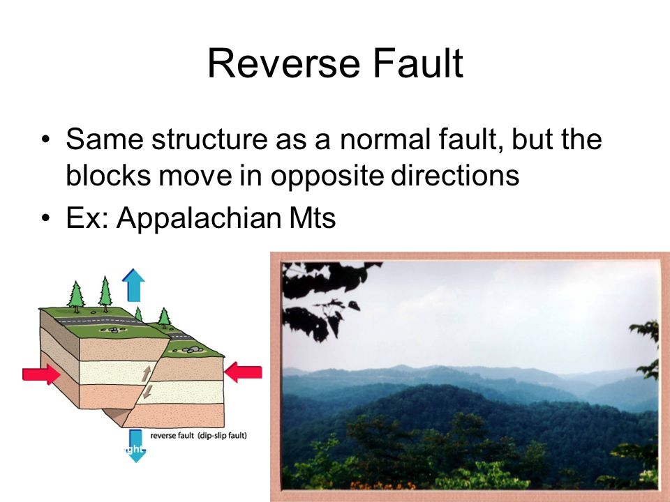 Reverse Fault Same structure as a normal fault, but the blocks move in opposite directions Ex: Appalachian Mts