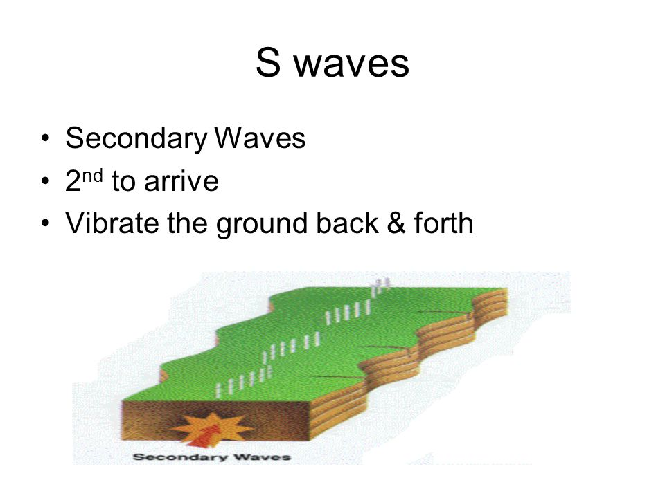 S waves Secondary Waves 2 nd to arrive Vibrate the ground back & forth