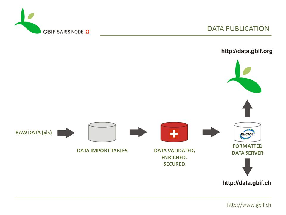 http://www.gbif.ch DATA PUBLICATION DATA IMPORT TABLESDATA VALIDATED, ENRICHED, SECURED FORMATTED DATA SERVER RAW DATA (xls)