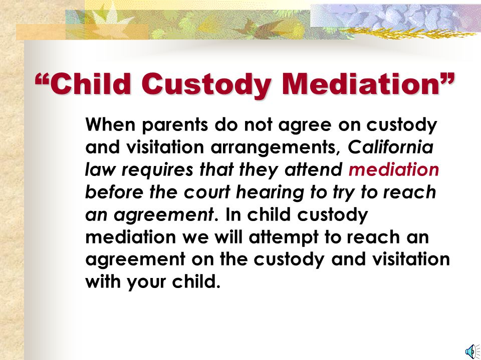 Mediator A trained professional assigned to help parents discuss their child's needs and assist them in making a schedule that best serves the child.