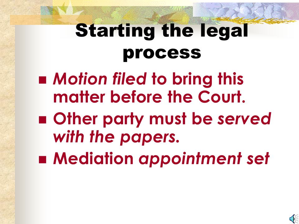 Part II: The Legal Process Starting the Legal Process The Mediation The Mediator's Report The Hearing After the Hearing