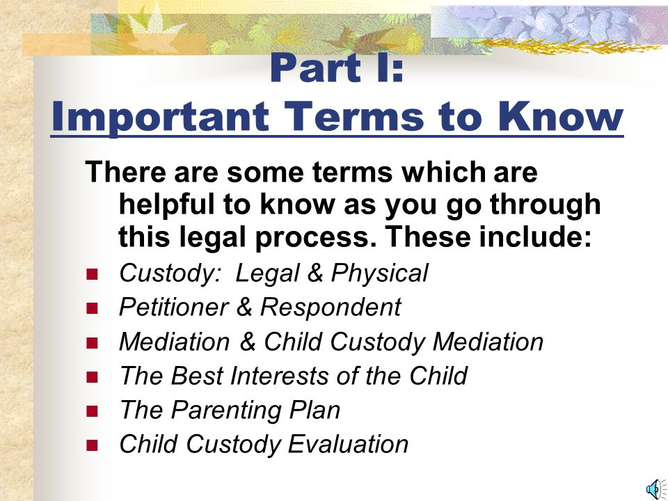 Part I: Important Terms to Know There are some terms which are helpful to know as you go through this legal process.