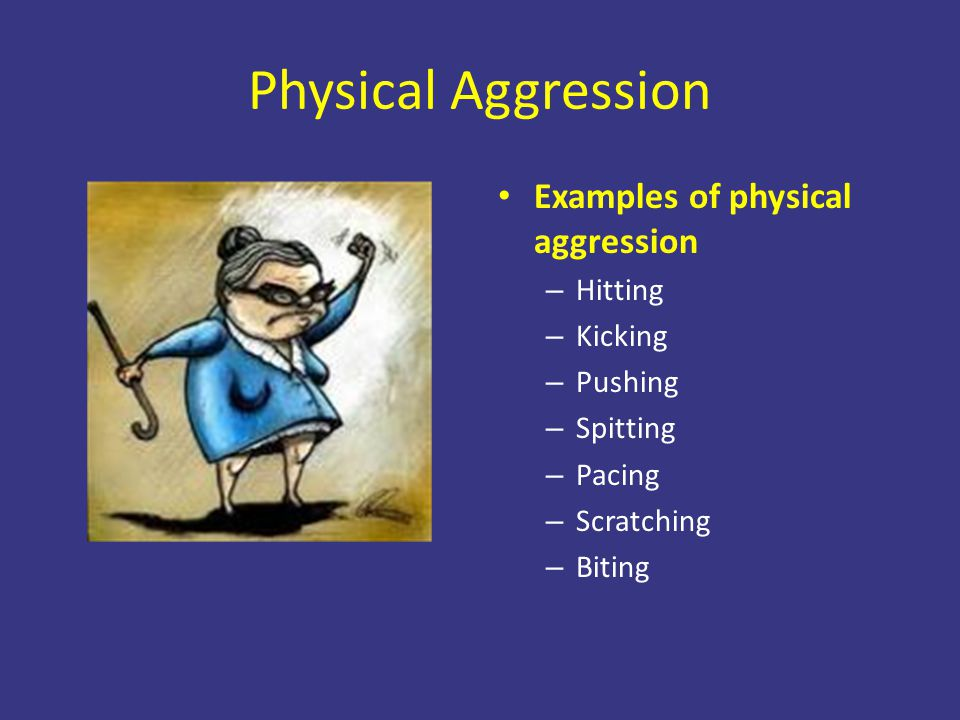 Physical Aggression Examples of physical aggression – Hitting – Kicking – Pushing – Spitting – Pacing – Scratching – Biting
