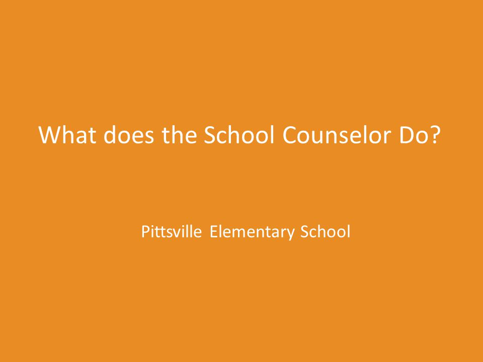 What does the School Counselor Do? Pittsville Elementary School