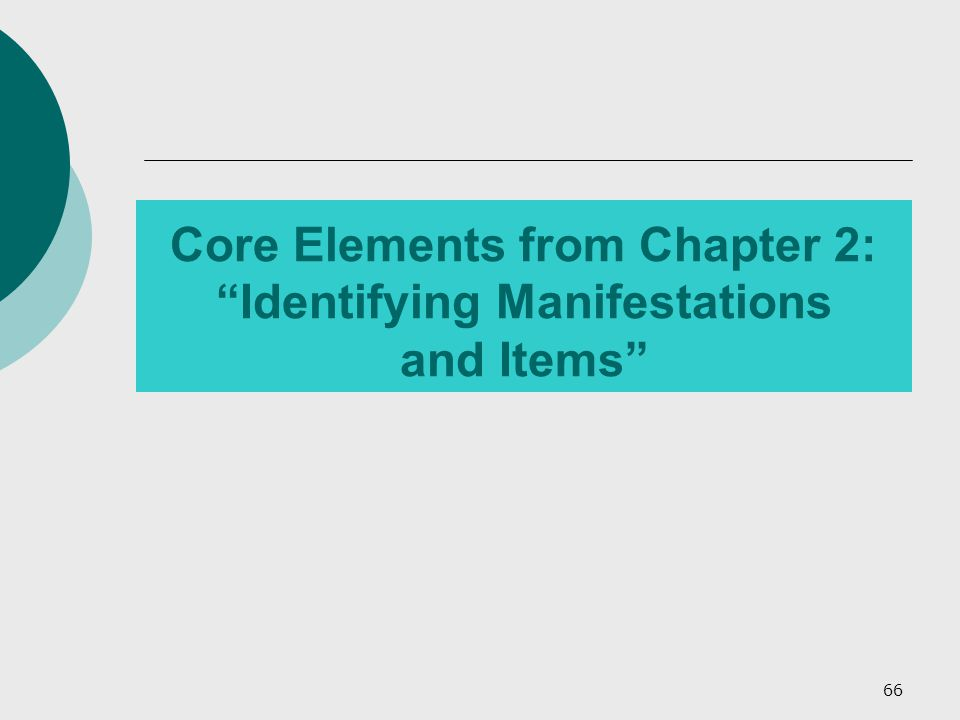 66 Core Elements from Chapter 2: Identifying Manifestations and Items