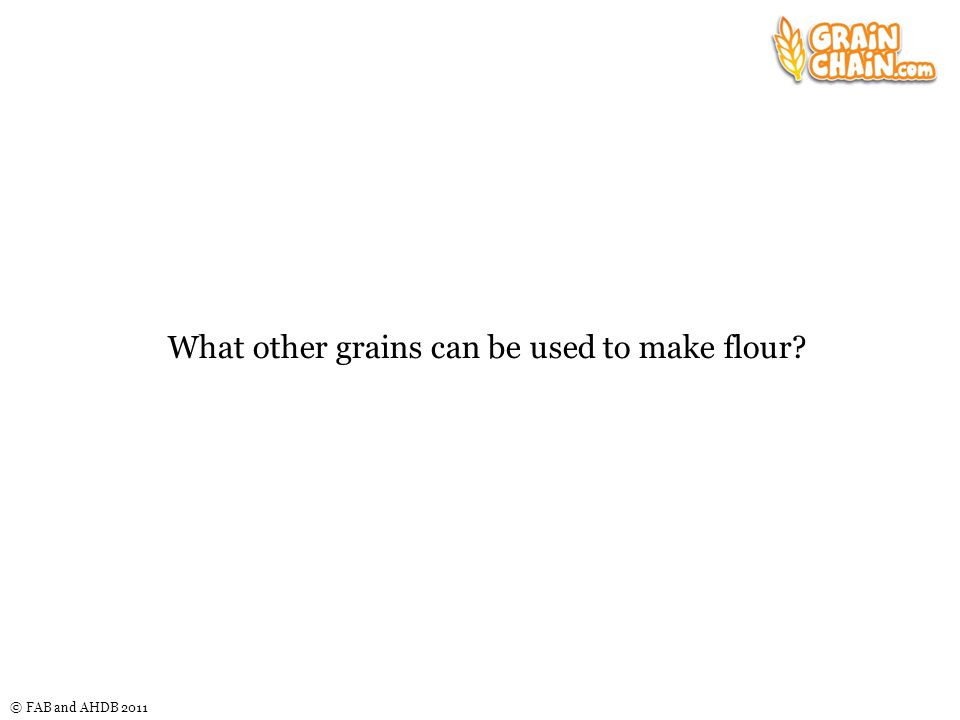© FAB and AHDB 2011 What other grains can be used to make flour?