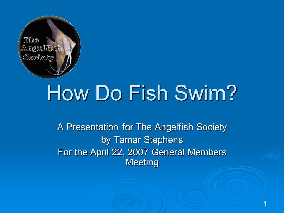 1 How Do Fish Swim.