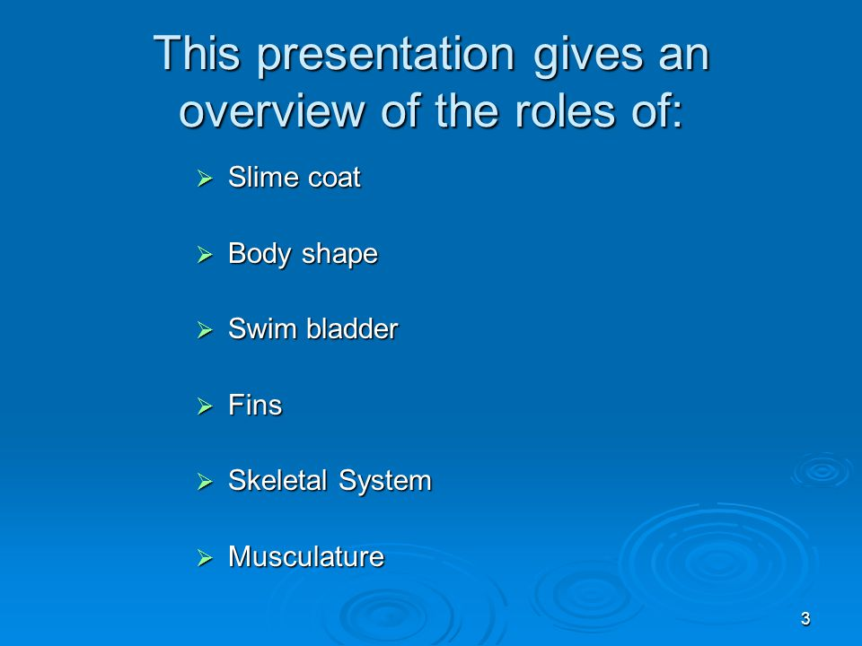 3 This presentation gives an overview of the roles of:  Slime coat  Body shape  Swim bladder  Fins  Skeletal System  Musculature