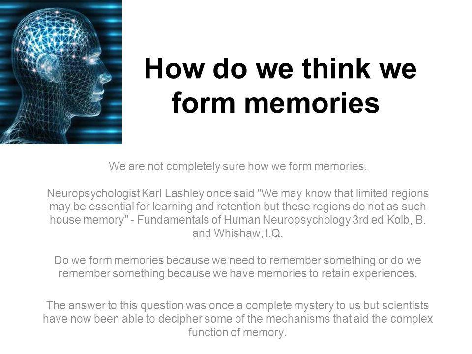 How do we think we form memories We are not completely sure how we form memories.